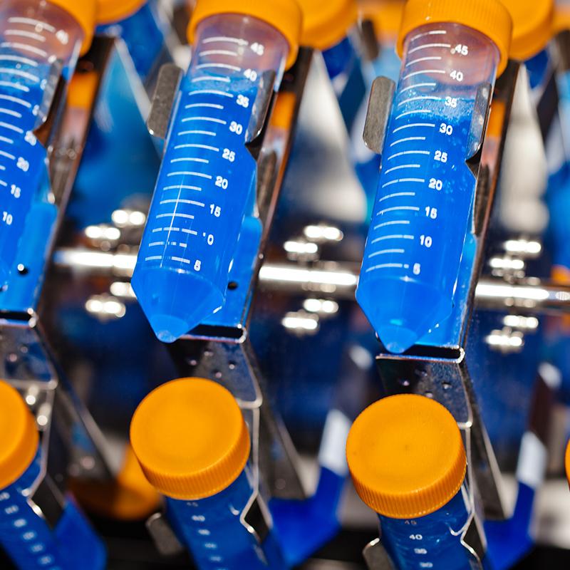 Centrifugación y tubos de ensayo