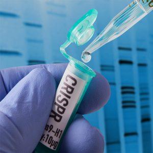 Biología molecular